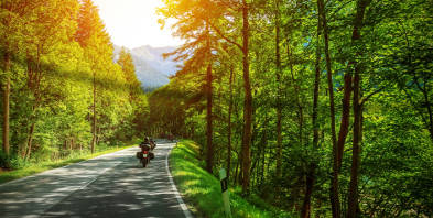 Motorrad-Wald-Ausflug-Sonne.jpg