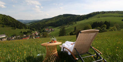 Vital-Hotel-Gruener-Baum_Entspannung-Ruhe-suabere-Luft-Sommer-Welless.jpg